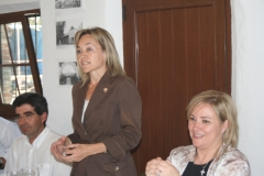 0907.061 Vice-Presidenta Diputación